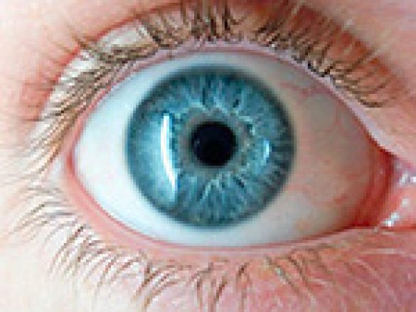 El color de ojos