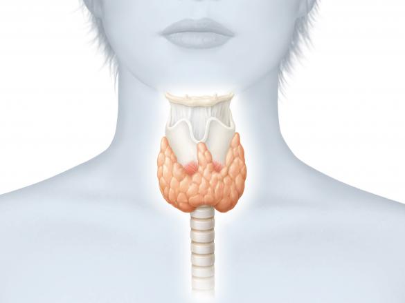 Problemas visuales relacionados con la tiroides
